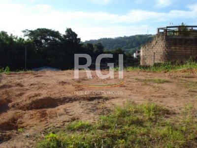 Terreno em Vila Nova - Foto 4