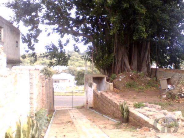 Terreno, Medianeira, Porto Alegre (MF19401) - Foto 4