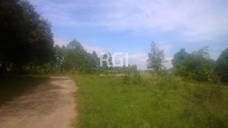 Terreno, Rincão da Madalena, Gravataí (MF20400)