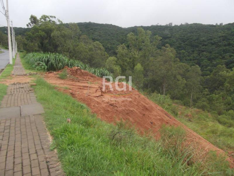 Terreno em Santa Isabel - Foto 9