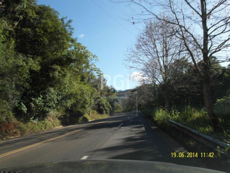 Terreno, Centro, Morro Reuter (MF20491)