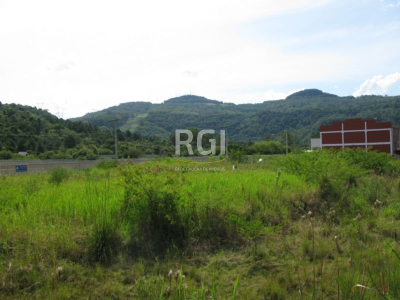 Área em Imigrante, Campo Bom - RS