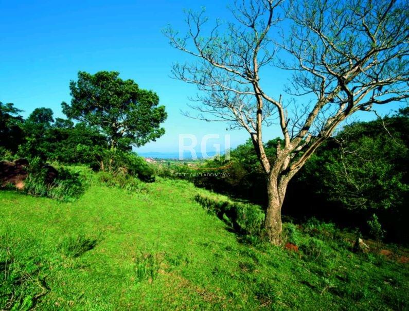 Terreno em Vila Nova - Foto 11