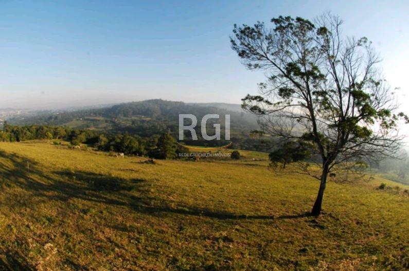 Terreno em Vila Nova - Foto 9
