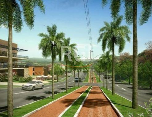 Terreno em Vila Nova - Foto 5